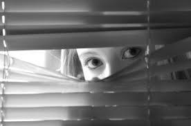 donna stalker